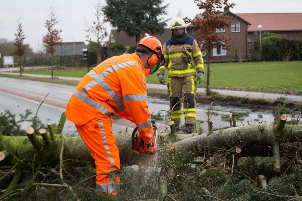 Omgevallen boom hindert verkeer