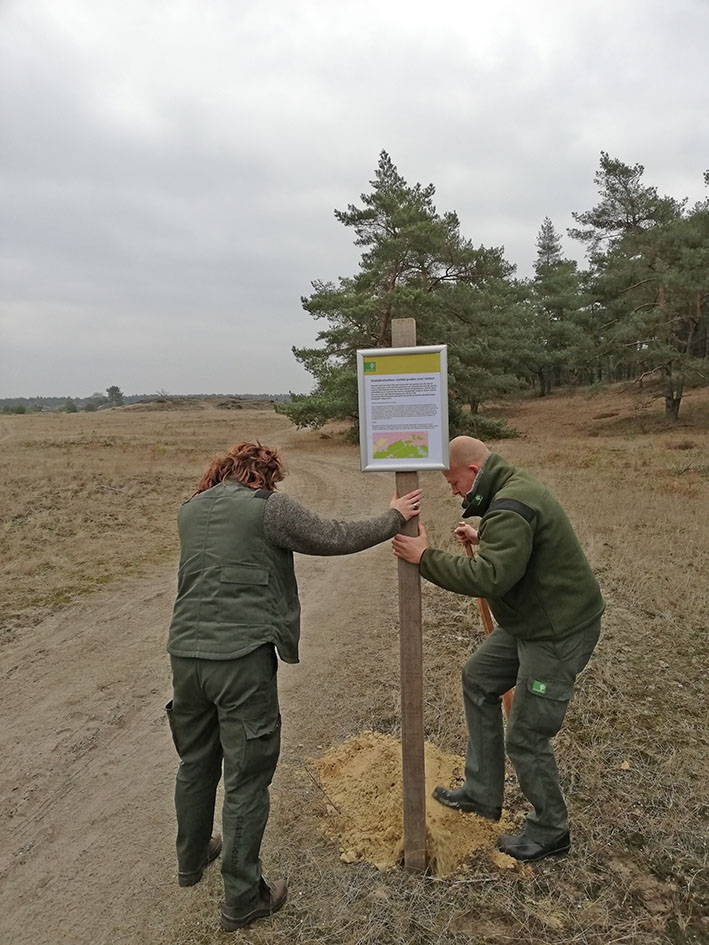 Diverse wandelpaden op Veluwe dicht voor aanleg transferium
