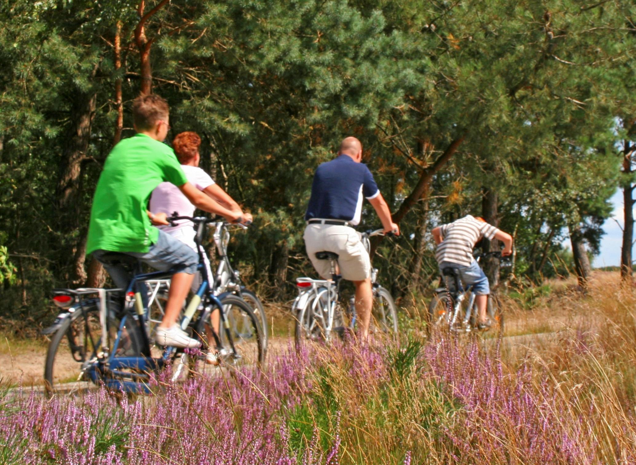 Snelle fietsroute tussen Apeldoorn en Epe op voormalige spoorlijn
