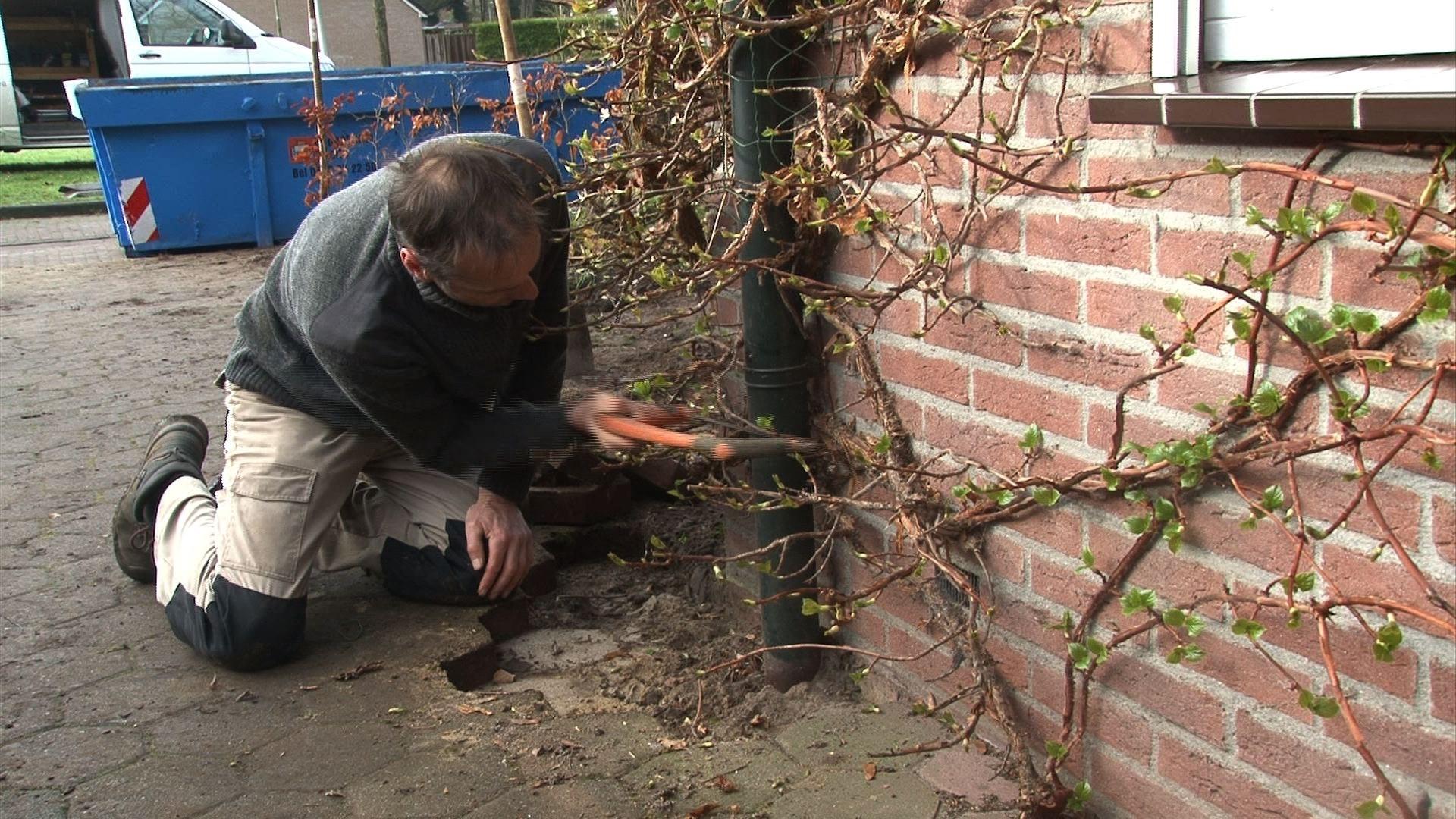 Regenwaterambassadeursnmaken tuin klimaat-proof