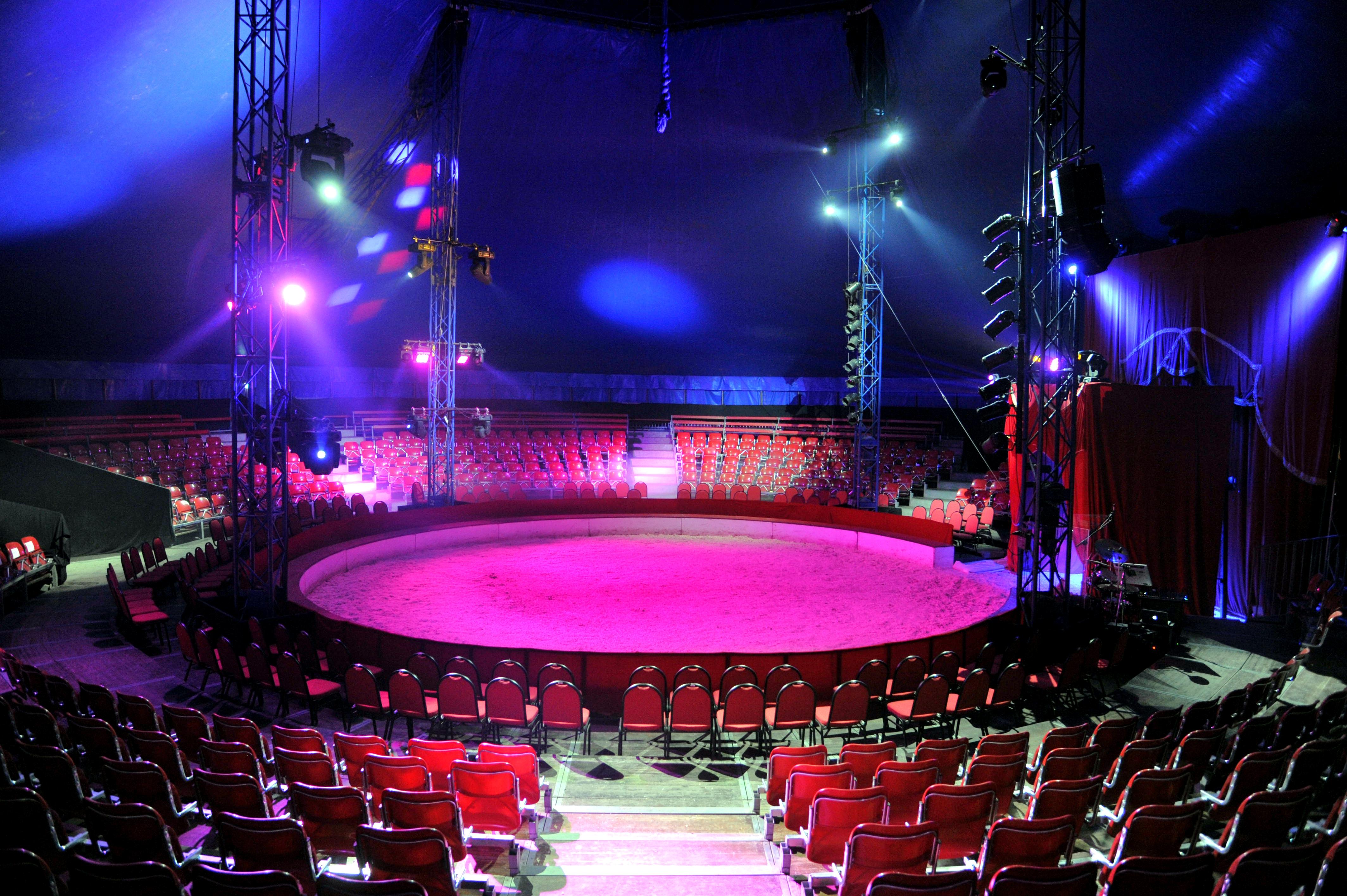 Vanmiddag circuskaarten afhalen