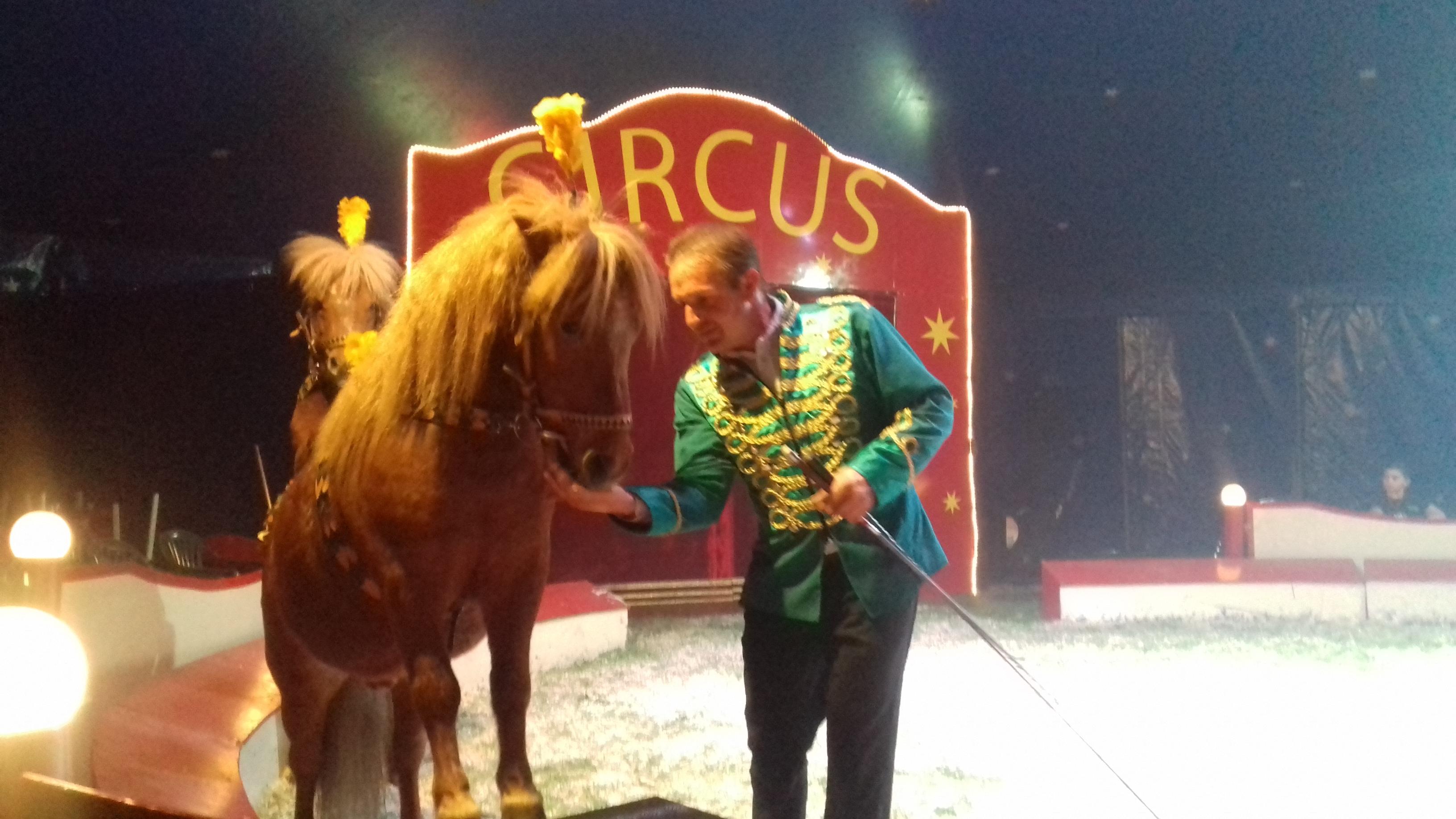 Laatste shows circus
