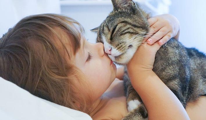Elk jaar liefst meer dan40.000 huisdieren terug