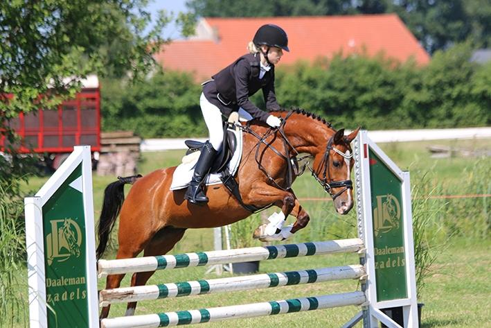 Paarden en pony's in actie