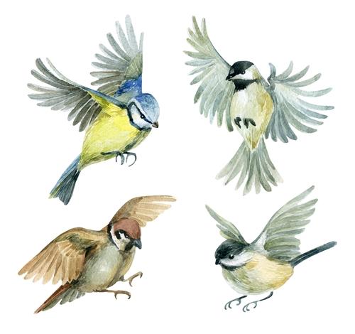 Vogelbeurs