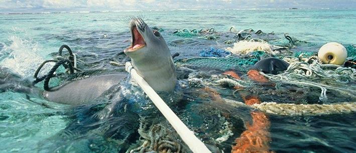 Duurzaam Warnsveld in actie tegen Plastic Soep