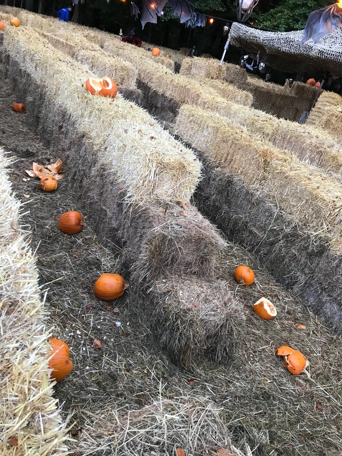 """Halloweenfeest verstoord door echte griezels"""""""