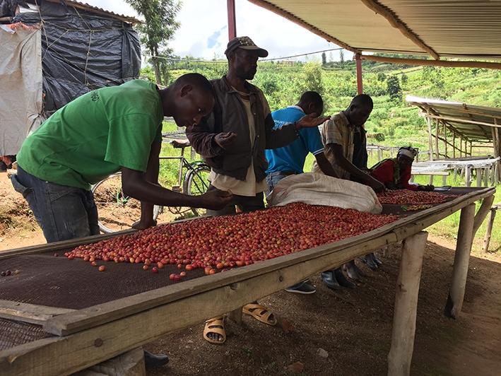 Een goed inkomen voor de koffieboeren en fantastische koffie voor ons