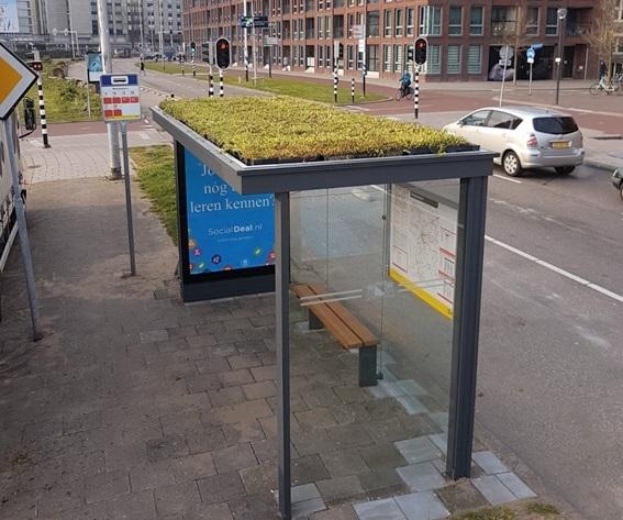 Mogelijk groene dakjes voor Apeldoornse bushokjes