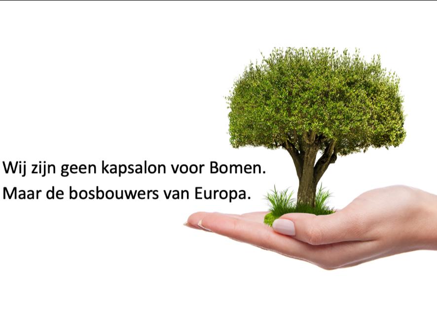 Uitgeverij Stedendriehoek lanceert in samenwerking met de Greenpaper