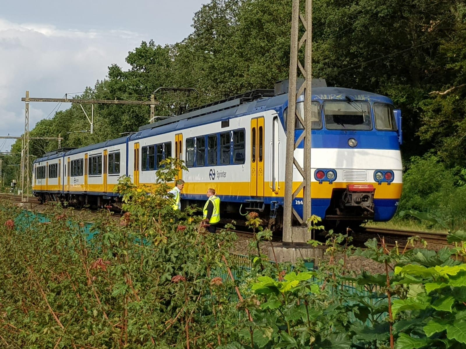 Paard wordt aangereden door trein