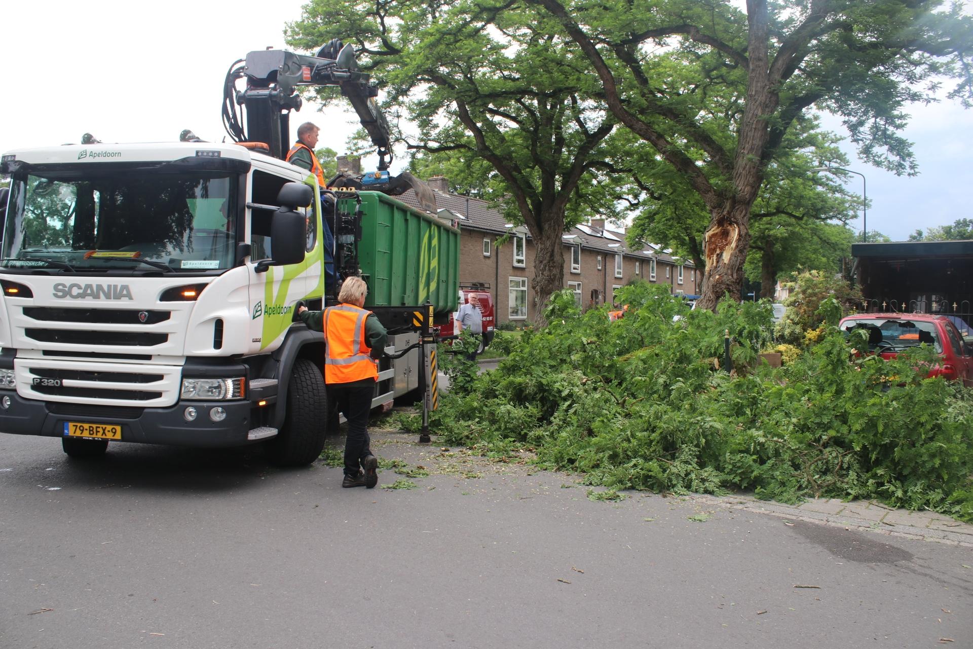 Deel van boom belandt op auto in Apeldoorn