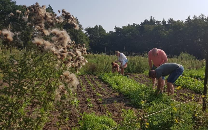 Naar eigen wens oogsten