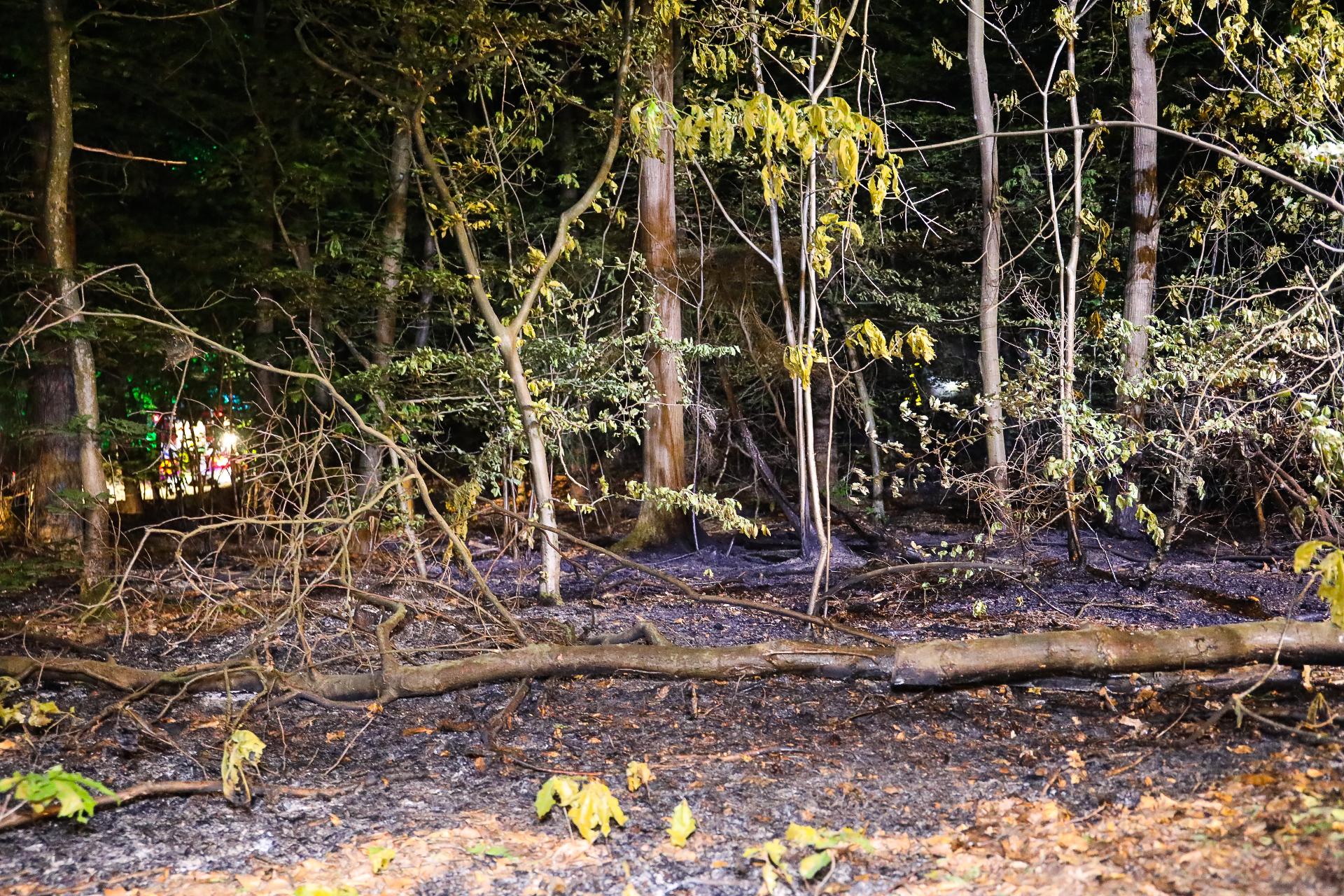 Opnieuw bosbranden in Apeldoorn; politie start onderzoek