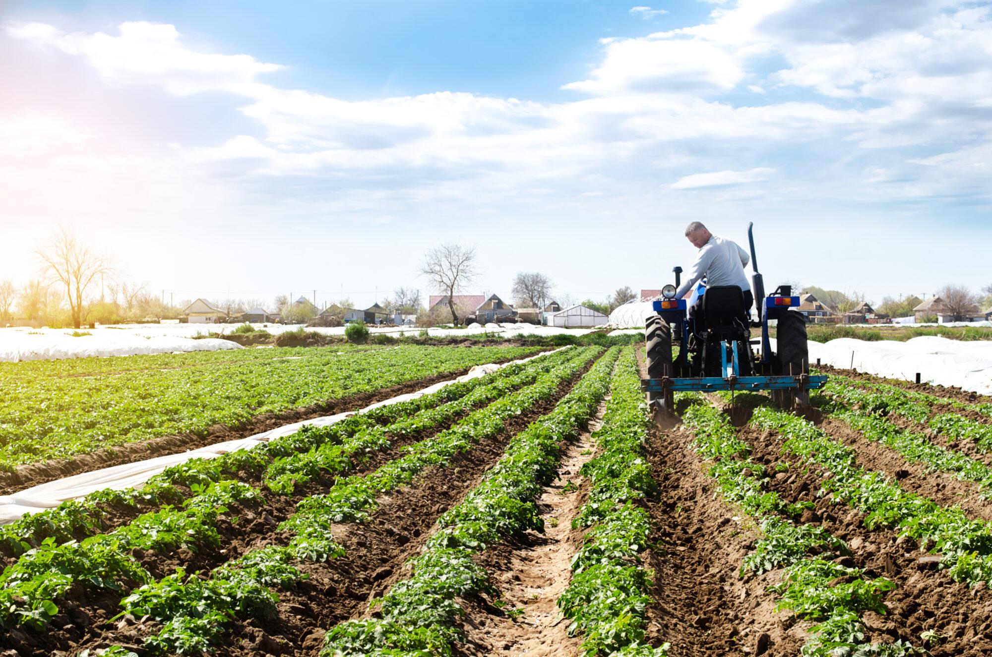 'Hoogste tijd voor gezond boerenverstand in Tweede Kamer'