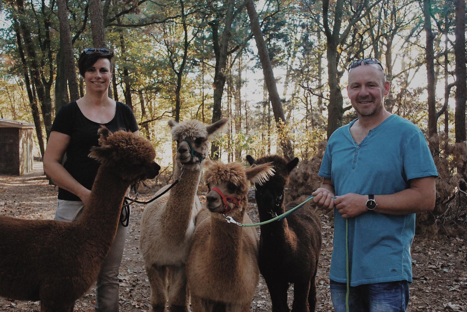 Zomertip: Alpaca Ranch d'n Achterhoek