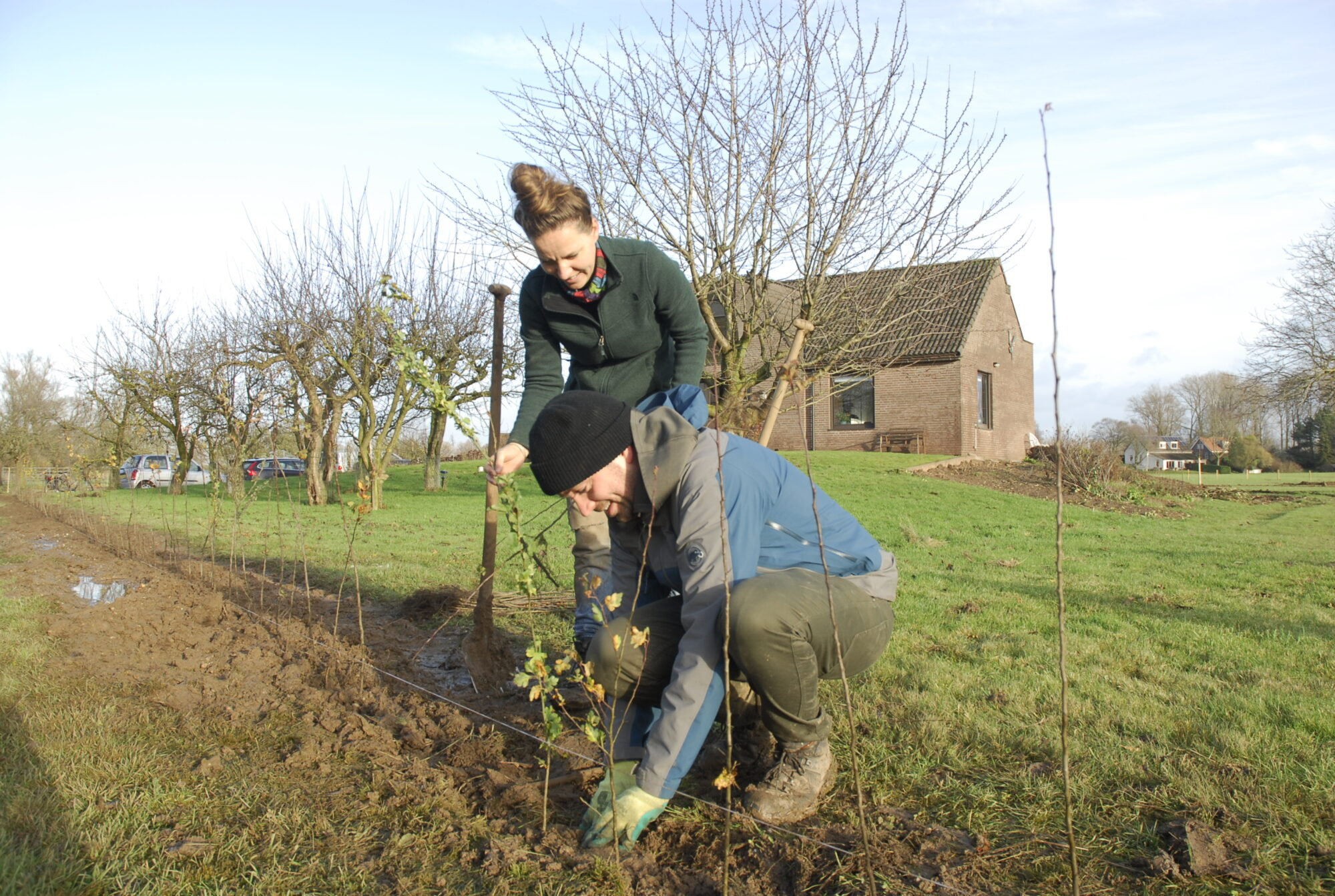 100.000 bomen en struiken in Gelderland