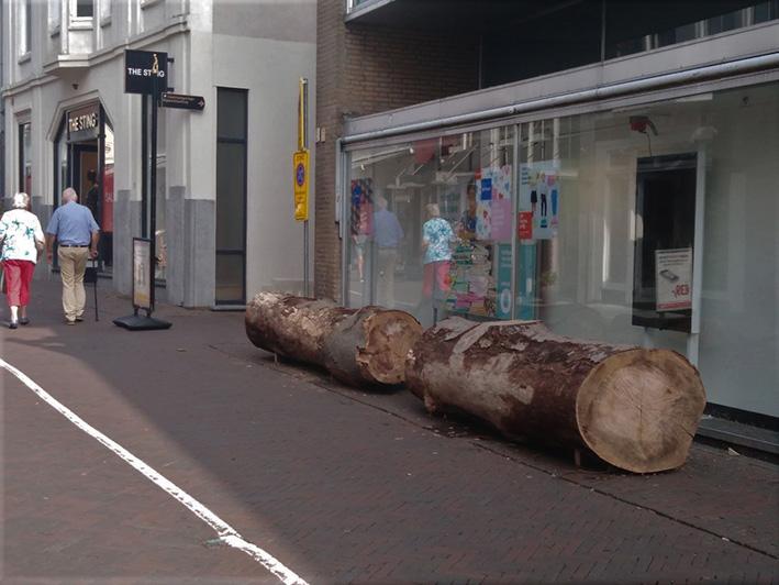 Bomen winnen het van fietsen in binnenstad