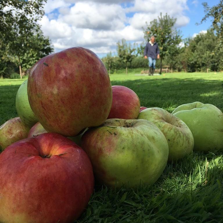 Ciderij vergelijkt graag appels met peren