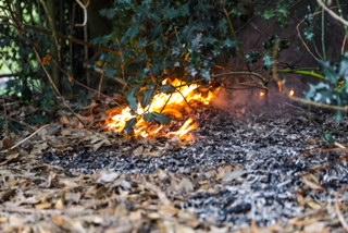 Brand in Apeldoorns park; brandstichting niet uitgesloten