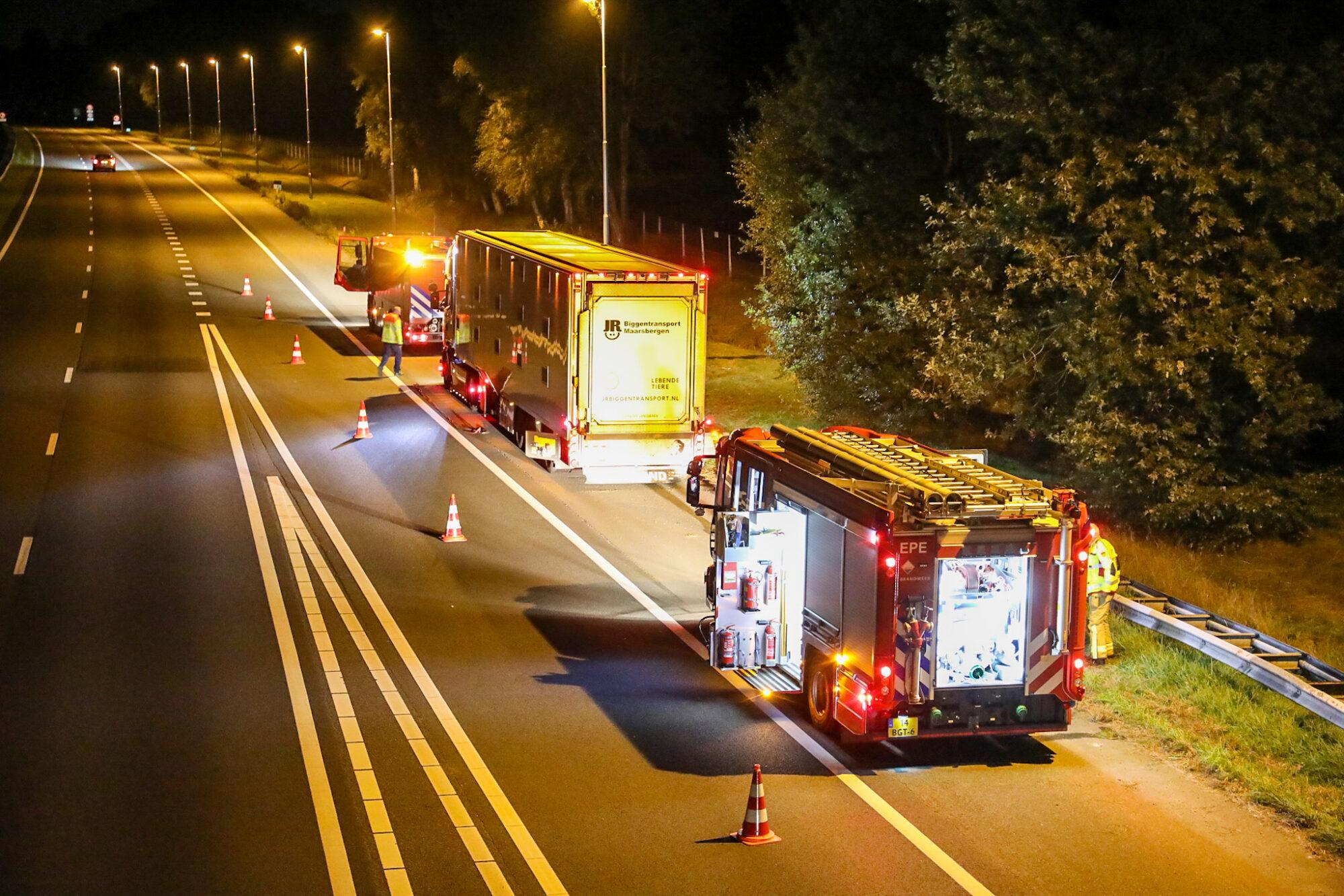 Varkens ongedeerd bij vrachtwagenbrand op A50 richting Apeldoorn