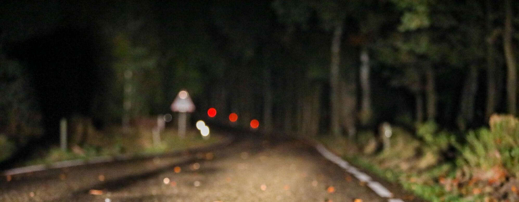 Pas op! Schrokkend beeldmateriaal   Aanrijding met wild zwijntje op Berg en Dalweg tussen Beekbergen en Hoenderloo