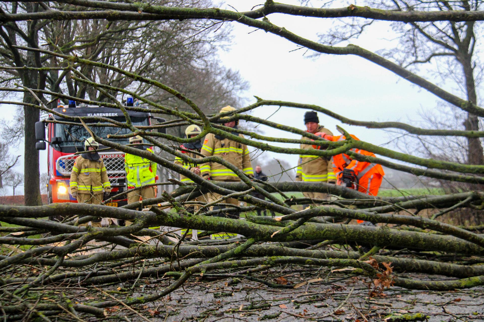 Storm Bella raast over Apeldoorn; loshangende takken en omgevallen bomen
