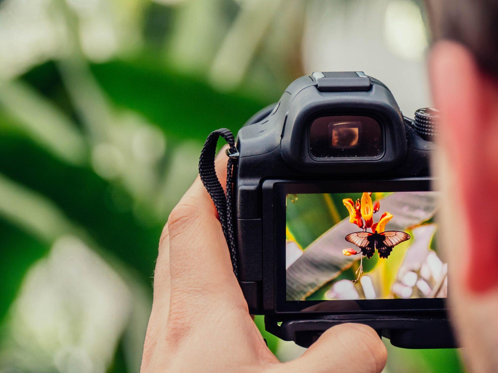 Fotowedstrijd zet biodiversiteit centraal
