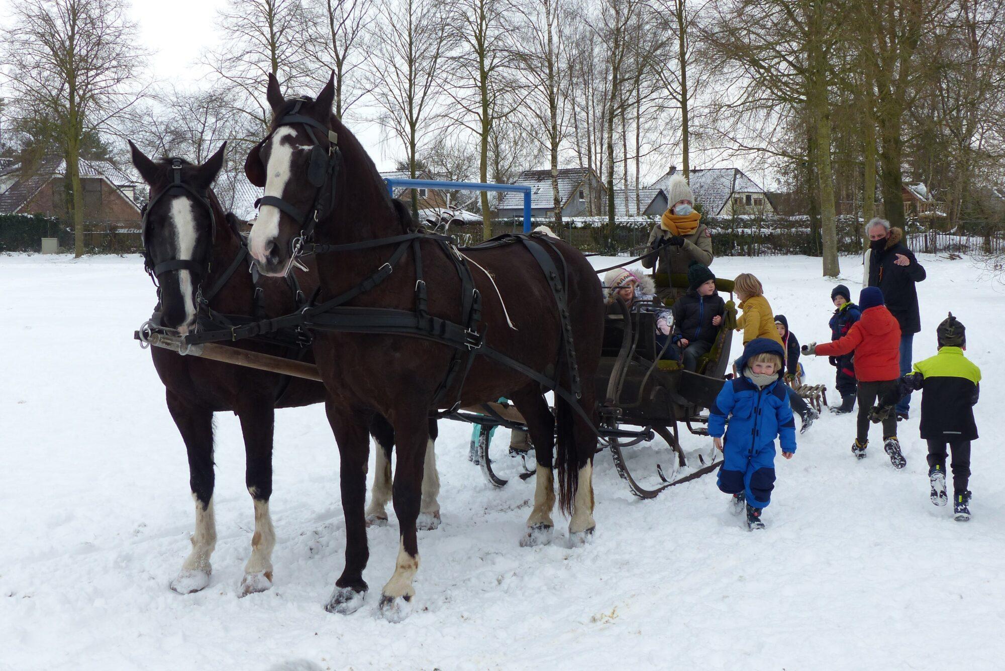 Leuvenheimse kinderen op de arrenslee