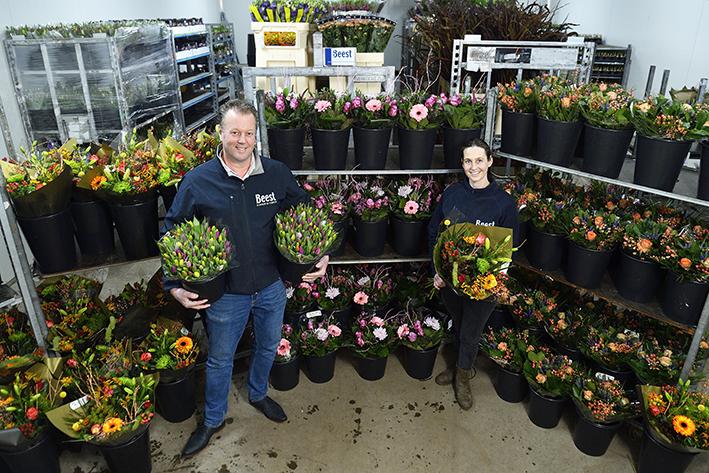 Dagverse bloemen rechtstreeks vanaf de veiling