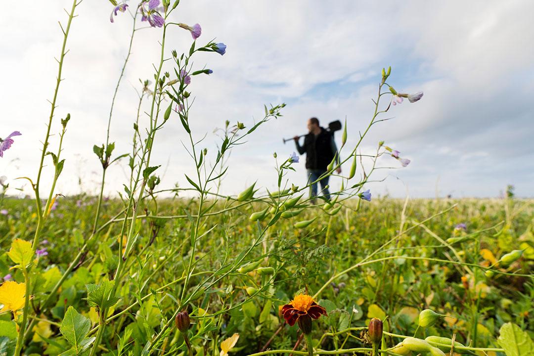 Gelders platform voor boeren met natuurinclusieve landbouw