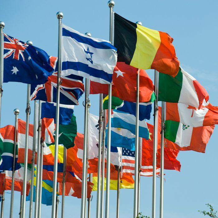 Ontwerp de Sallandse vlag