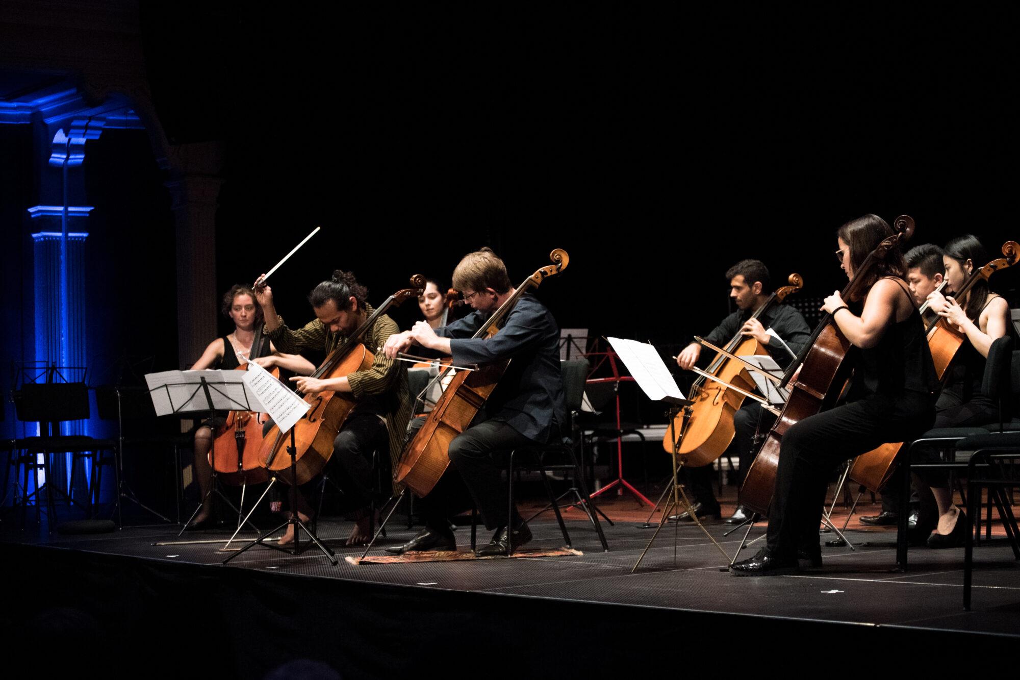 Verrassend en veelbelovend thema Cellofestival