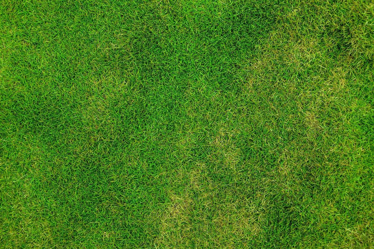10 Voordelen van kunststof grasplaten of grindmatten