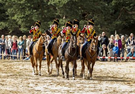 Weekend van het Paard in NP De Hoge Veluwe