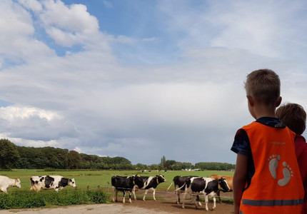 Zomertip: Kijkje in het boerderijleven