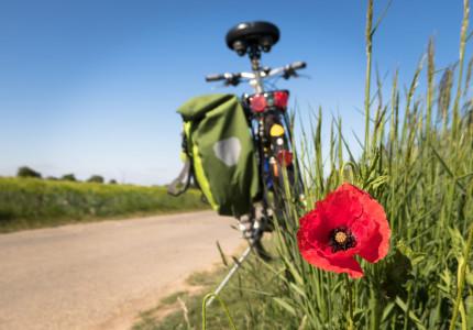 Ontdek fietsend duurzaam Apeldoorn