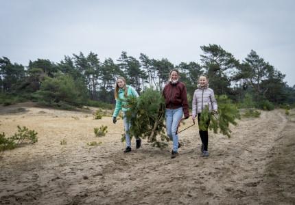 Zaag Je Eigen Kerstboom en help mee om de open landschappen te behouden