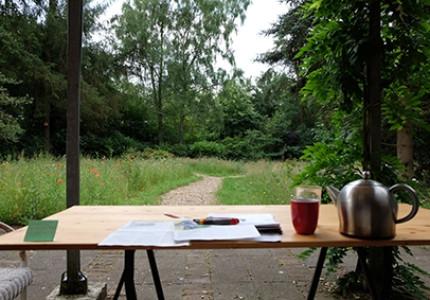BesselsGreen: vier seizoenen optimale tuinbeleving