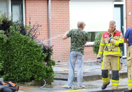 Onkruid verbranden gaat fout; Coniferenhaag vat vlam