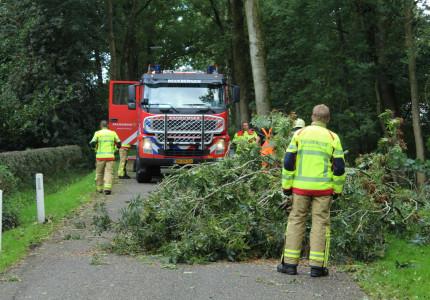 Brandweer haalt omgevallen boom van rijbaan aan Engeland in Beekbergen