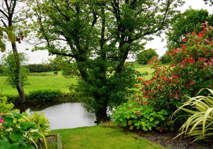Hoe voorkomt u wateroverlast in uw tuin?