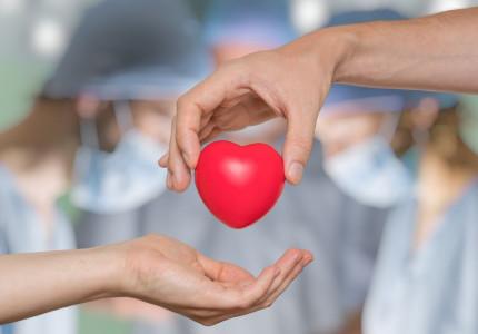 Ruim helft Zutphenaren nam reeds besluit over orgaandonatie