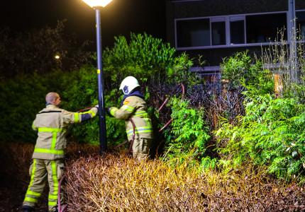 Brand in coniferenhaag snel geblust