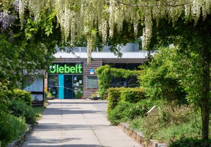 Groene ontmoetingsplek in de wijk Zandweerd te Deventer