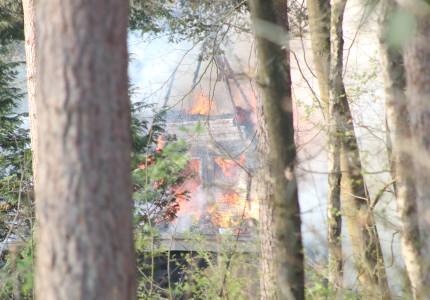 Rietgedekte woning gaat in vlammen op