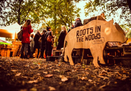 Roots in the Woods festival vindt droomlocatie bij Paleis Het Loo