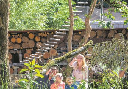 Apenheul stimuleert liefde voor dieren en natuur