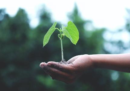 Mensen die kunnen helpen met de groei van jouw bedrijf
